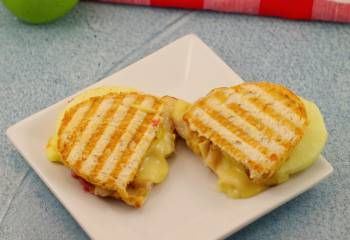 Leftover Turkey, Cranberry & Brie Panini