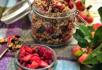 Healthy Sugar-Free Homemade Berry Granola